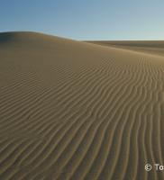 Tottori Sand dune_R